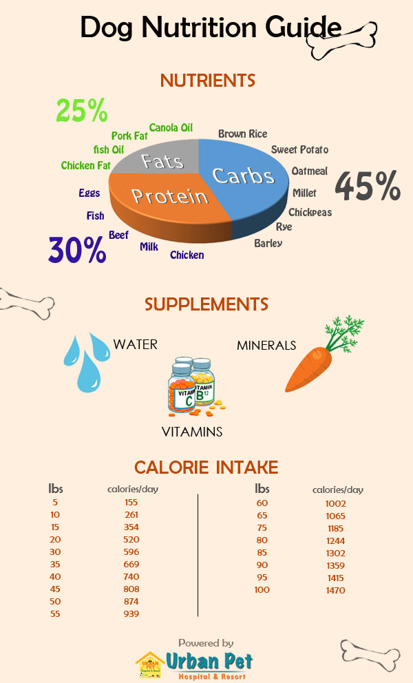 dog nutrition chart