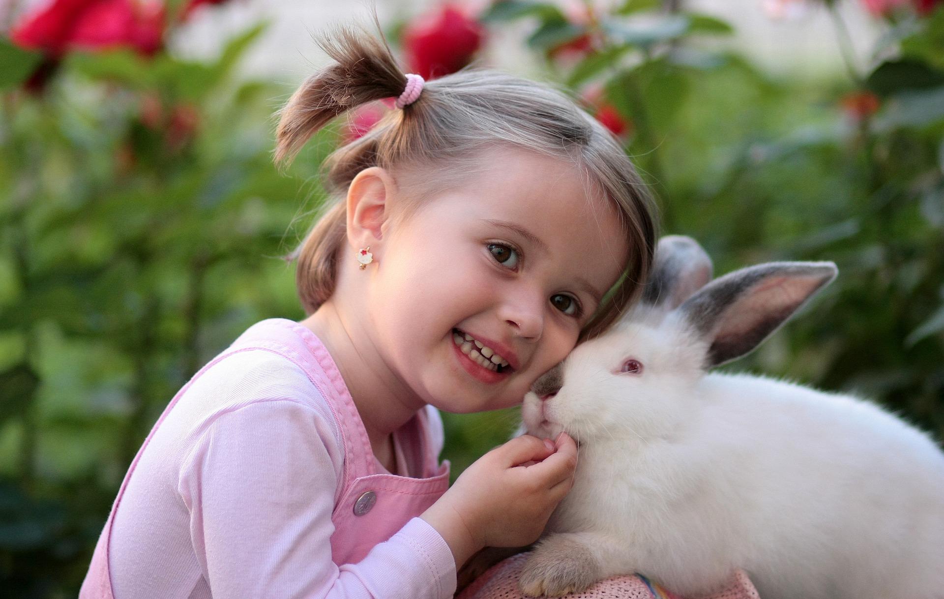 Pet News & Articles | Urban Pet Hospital Blog | Do Rabbits make Good Pets?