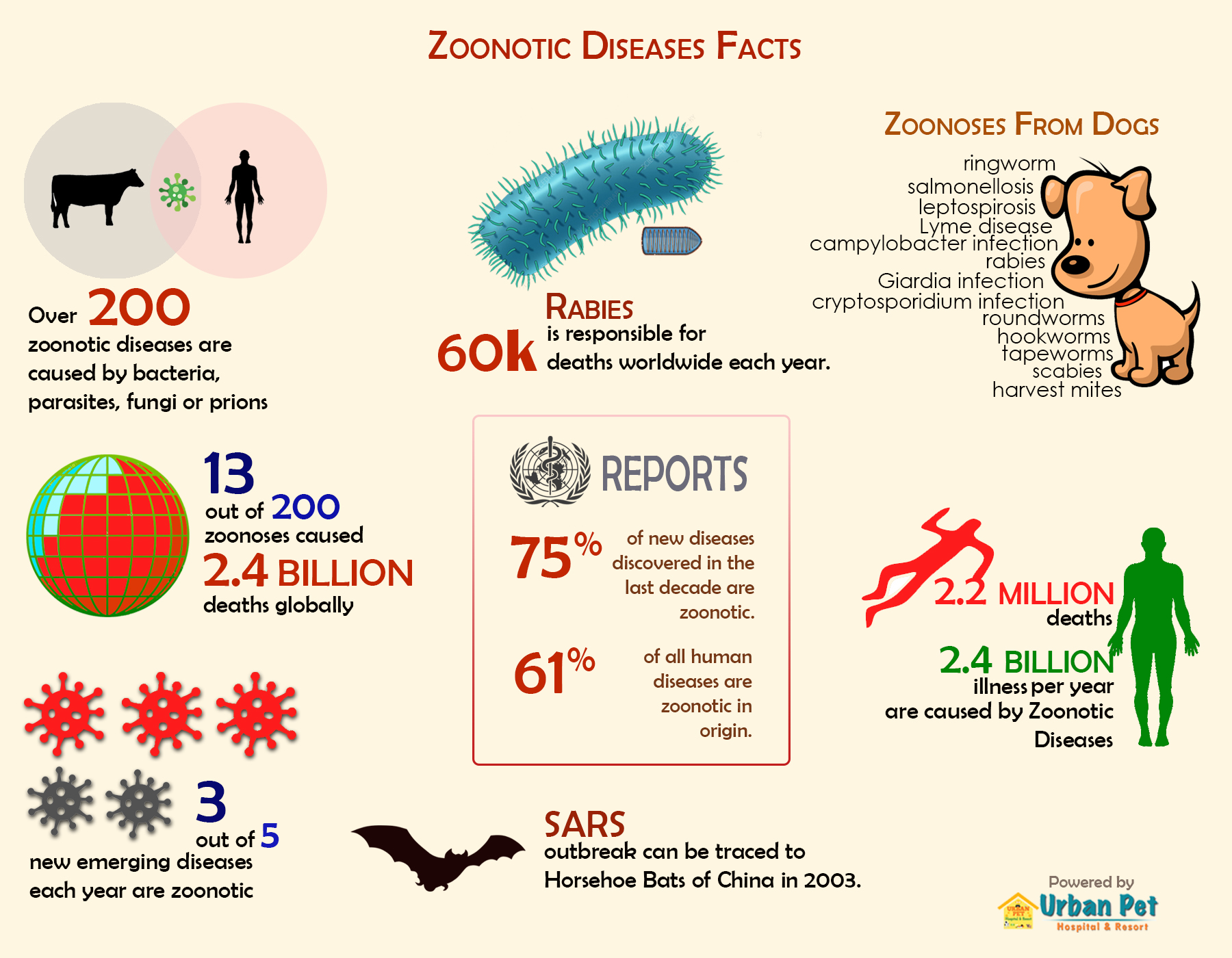 zoonotic disease infographic